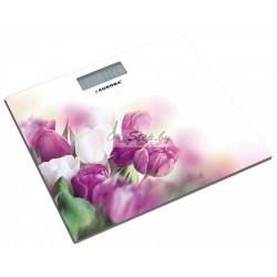 Купить весы напольные AURORA AU 4310 в http://onestep.by